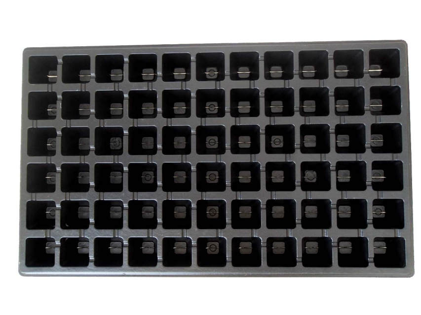 66 cells seedling tray