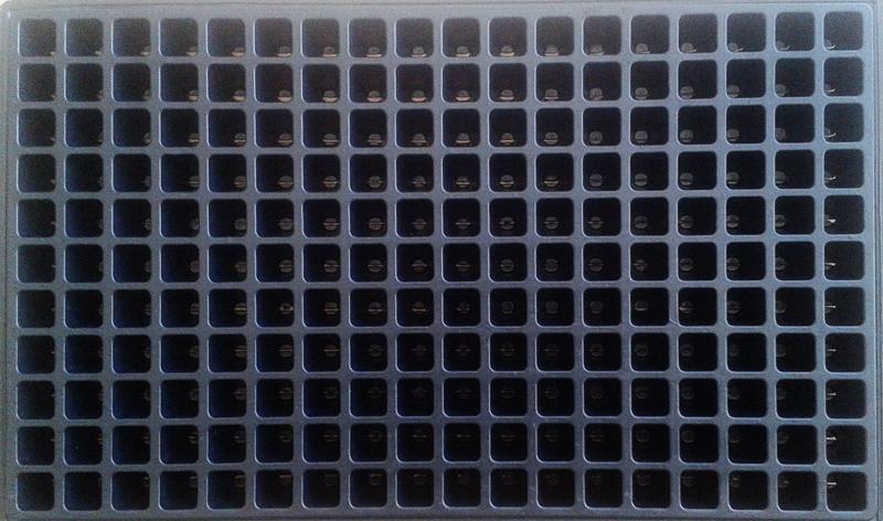 Seedling tray - 198 holes